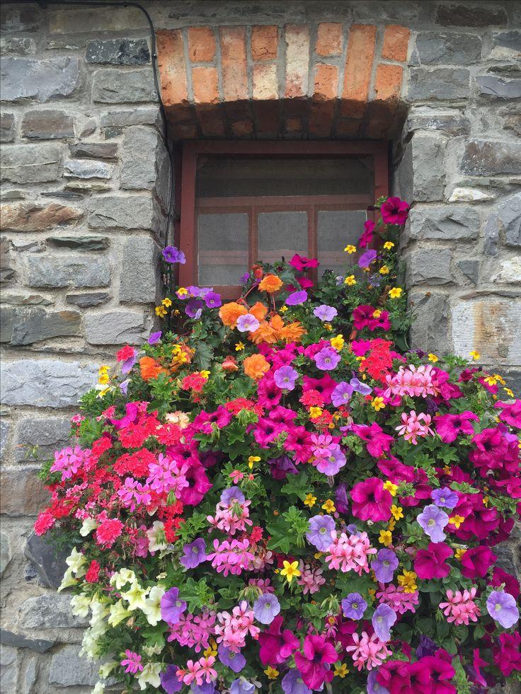 Window at Skerries Mill