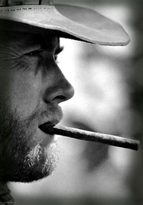 """Blondin """"Dans la vie, il y a 2 catégories de personnes. Ceux qui ont un pistolet chargé, et ceux qui creusent. Toi, tu creuses."""""""