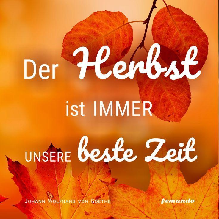 Herbststimmung Die Besten Bucher Herbst Bucher Gute Bucher Und Bucher
