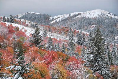 Autumn Mountain Scenes | Mountain Autumn Scene with First Snow - Pocatello, Idaho