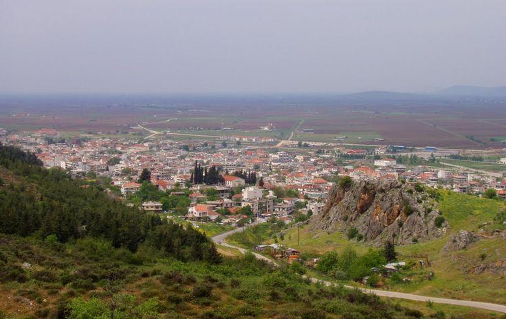 Ελλάδα - Θεσσαλία: Φάρσαλα Photo from Farsala in Larissa | Greece.com