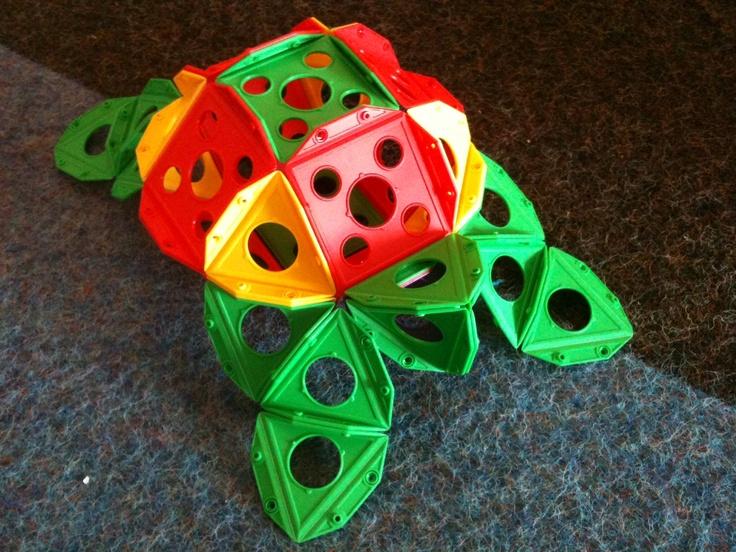 Triqo turtle