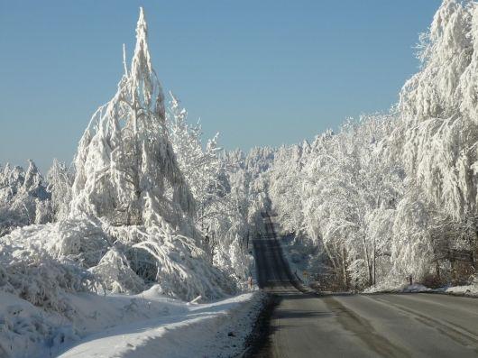 Bieszczady Poland  winter  Wonderland