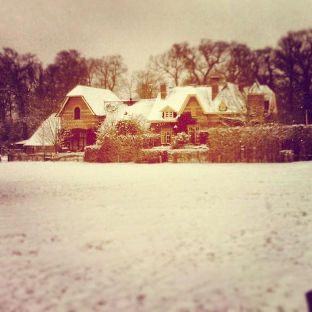 Lodge Twickel, jachthuis op de es bij Delden - @marcel_tettero- #webstagram