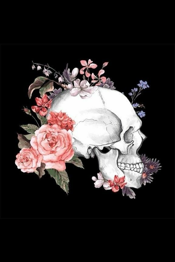 11 best Anatomia Humana // Cursos na área da Saúde images on ...