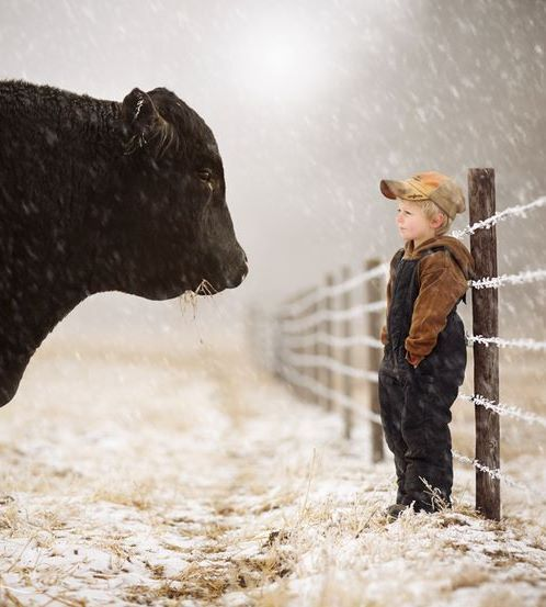 Do you think this little boy knows what will happen to that beautiful animal he's friends with?Nancy Sewell