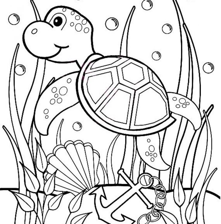 Online turtle coloring pages for kids