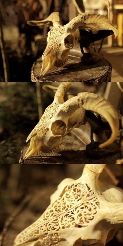 goat skull carving