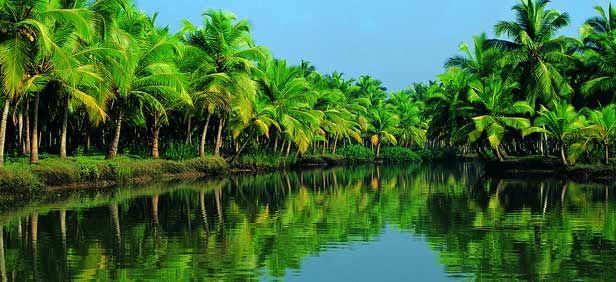 8 Nights & 9 Days Kerala Holiday Packages. Destinations: Marari , Thekkady , Munnar , Kumarakom , Cochin ,  Alappuzha Houseboat