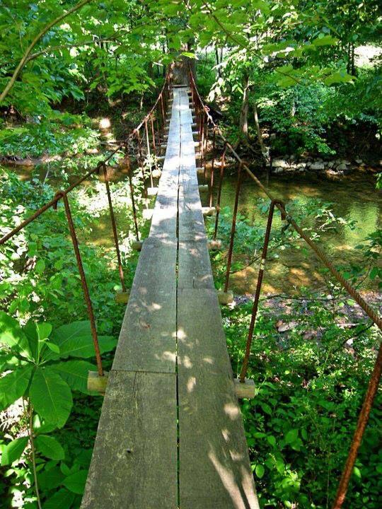 Swingers in capon bridge west virginia
