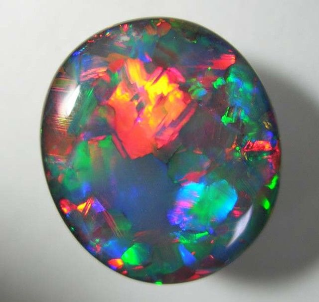 Investment Opal 18 x 16 x 7mm 13 carats Auction #421799 Opal Auctions