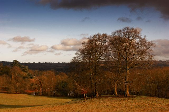 """Gatton Park An historic parkland designed by Lancelot """"Capability"""" Brown with Edwardian gardens in Reigate. This particular view is towards Merstham."""