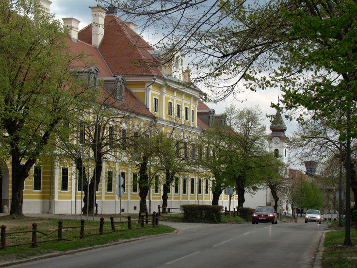 Vukovar,Slavonija-Castle Eltz,church of st. Roch,and Vukovar watertower
