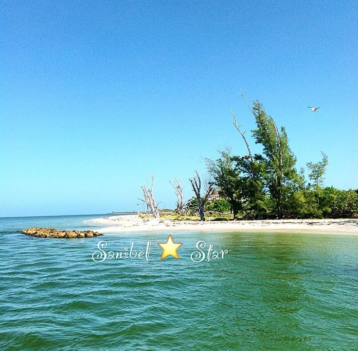Captiva Island: 17 Best Images About Sanibel / Captiva / North Captiva On