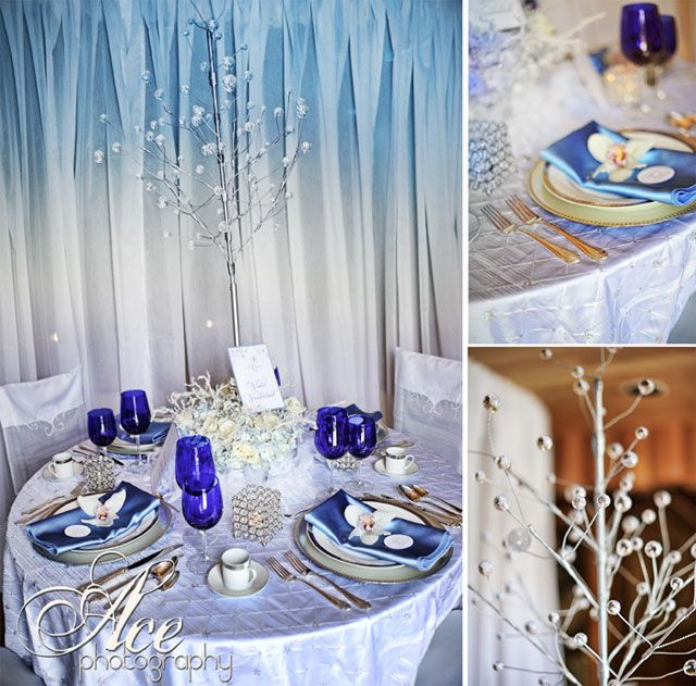Snowflake Themed Wedding | Incredible Wedding Venue, With Unlimited Options | Nashville Wedding ...