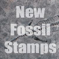 Fossil Stamps for Concrete
