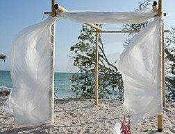 Hey, I found this really awesome Etsy listing at http://www.etsy.com/listing/130757862/beach-wedding-bamboo-chuppaharch-kit