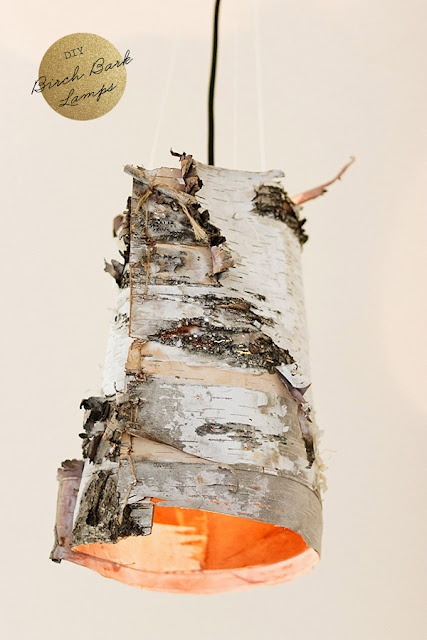 Authentic, homemade birch bark lamp shade. (...and these are a few of my favorite things)!