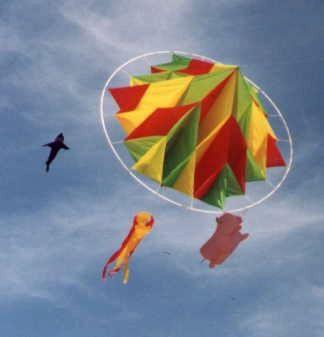 Asian kite flying
