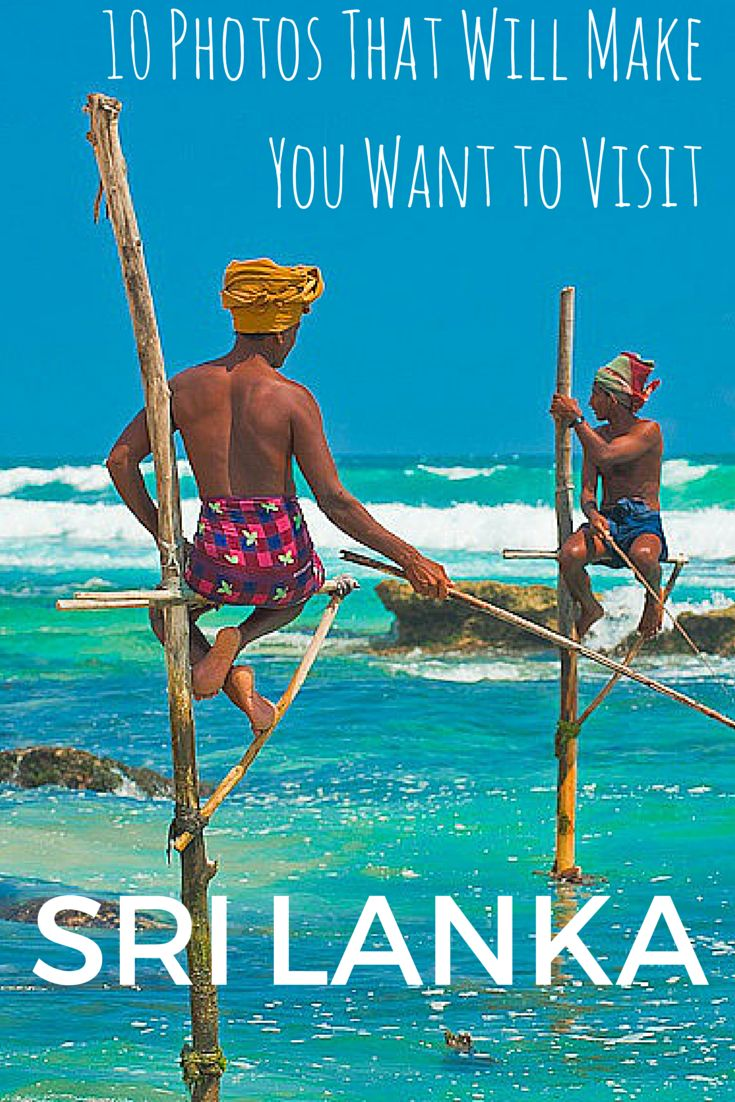 10 photos that will make you want to visit Sri Lanka | Paula Through the Looking Glass  Photo courtesy of Stephen Cruise