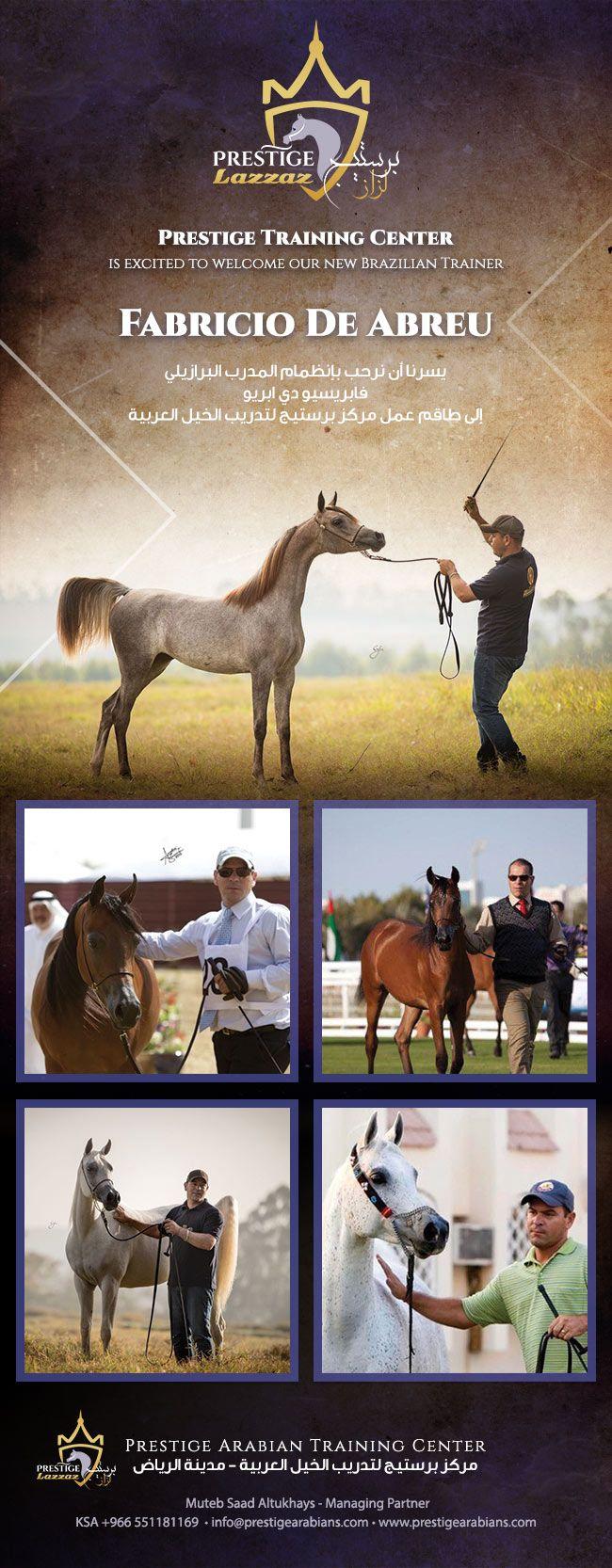 برستيج نرحب بالمدرب البرازيلي فابريسيو Horses Arabian Horse Arabians