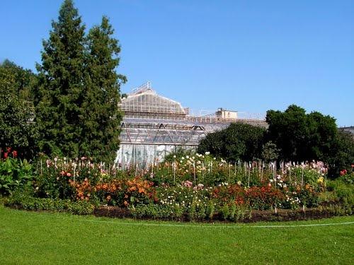 Košice - Botanická záhrada 6