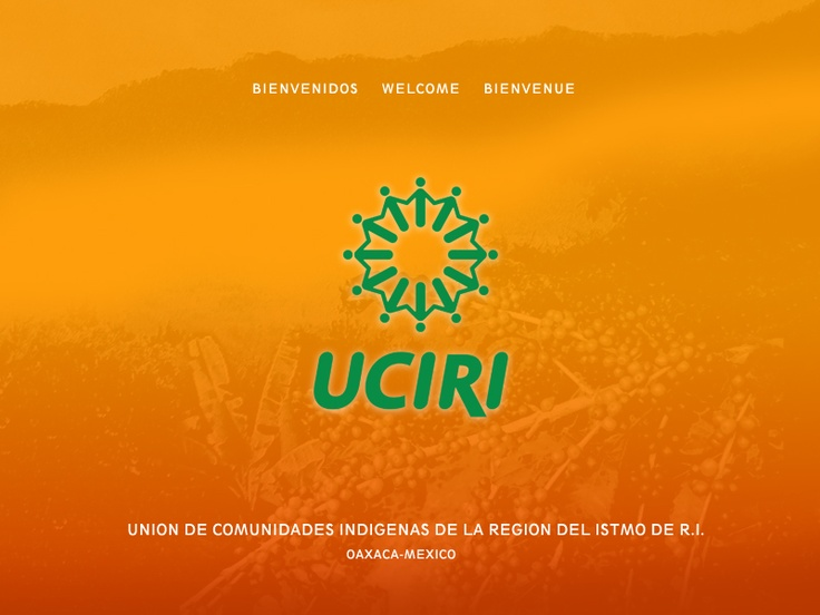 The Union of Indigenous Communities in the Isthmus Region (UCIRI) represents a location with great potential for Fair Trade to improve the lives of small farmers and communities in the global South.  Since 1982, the indigenous peoples – Zapotecas, Mixes, Chontales & Mixtecos, and Chatinos – have worked together to find alternative ways of bringing their coffee to market