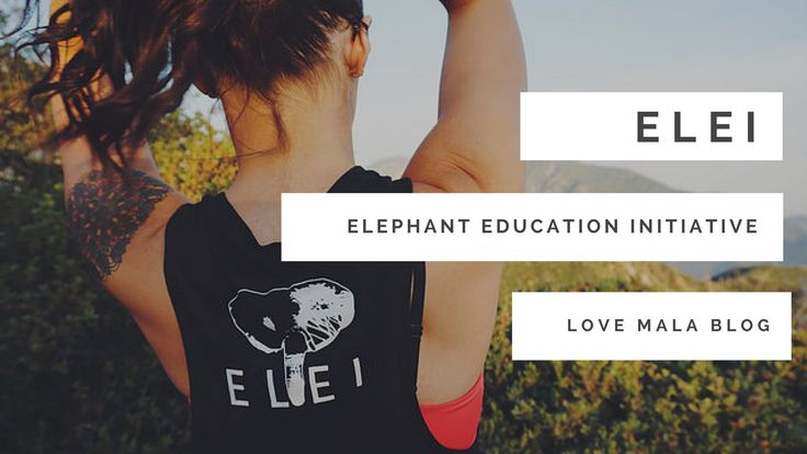 fashion for a cause | graphic tee outfit | graphic tank outfit | muscle tee outfit | ELEI | save the elephants | non-profit