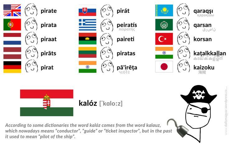 kalóz [ˈkɑloːz] – pirate  https://dailymagyar.wordpress.com/2016/12/04/kaloz/ #Hungarian #language #words #magyar #kalóz #pirate
