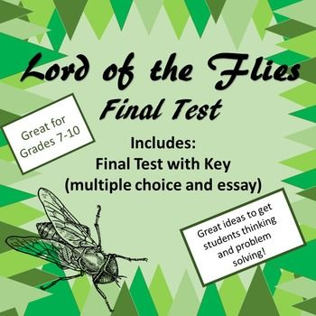 lord of the flies essay plans Teachers can use lord of the flies lesson plans to lead students in debates and other activities.