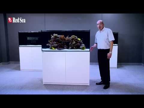 Red Sea REEFER™ Aquarium Systems - Rimless Reef Ready Marine Systems f...
