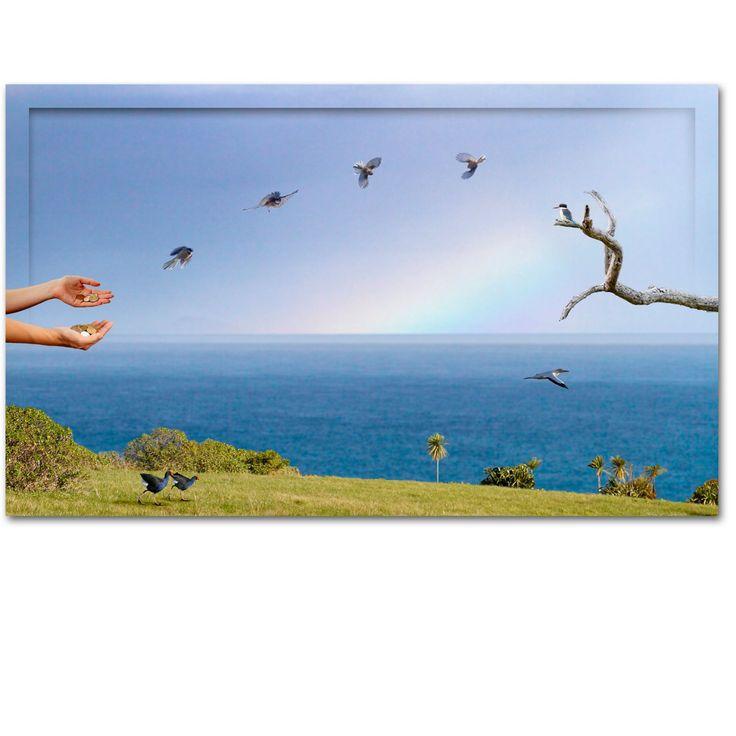 Tiritiri Matangi Island - A playground for wild life http://ianandersonfineart.com/