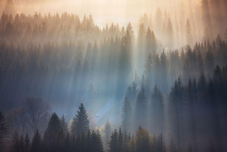 Fotografie Marcina Sobase vám opět připomenou, jak úžasná příroda je. Umělec se vydal do Beskyd (do části v Jižním Polsku) na obyčejný výlet, ale počasí se úplně nezdařilo, a tak se chtěl brzy vrátit domů. Během tůry však došel na kopec, kde se mu naskytla úžasná podívaná –stromydusila mlha, zatímco na některých místech se vrcholky...