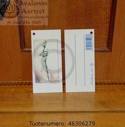 Minna Immonen gift card: lucky bamboo / Minna Immosen pakettikortti: onnenbambu