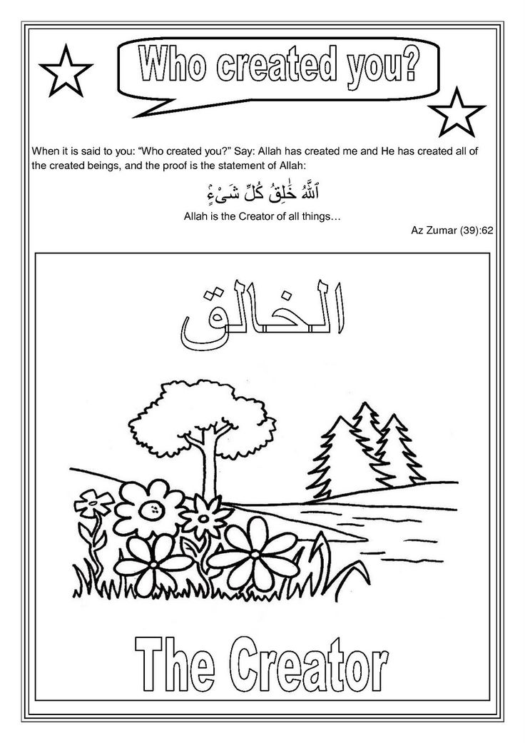a muslim homeschool: Islamic Studies- Lesson 1 (continued): Who created You?