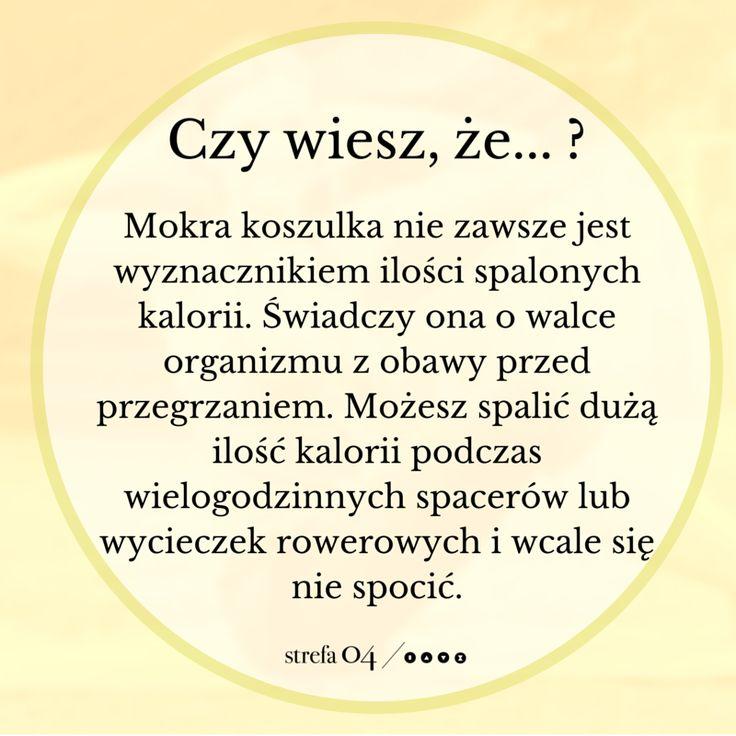 www.strefa04.pl/blog Jeśli chcesz dowiedzieć się więcej na temat ciekawostek związanych z treningiem i odżywianiem, sprawdź już teraz naszego bloga! #fitness #odchudzanie #trening #motywacja