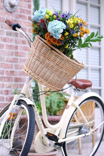 Flowers in the front basket on a bike I want to RIDE it, not display in my yard, please!