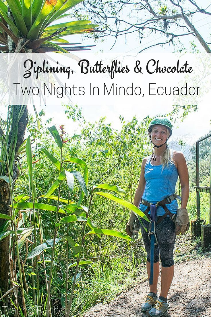 Ziplining, Butterflies, and Chocolate - What to do with Two Nights in Mindo, Ecuador - Trailing Rachel - Visit the blog to learn more on what to do in Mindo!