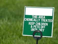 Organic Lawn Care:Making The Transition From Chemicals | Big Blog Of Gardening
