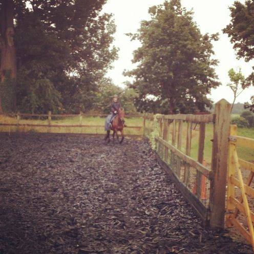 I love horse riding, this is Miller! <3