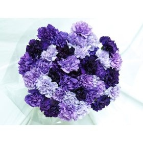 Love carnations! Purple carnation bouquet