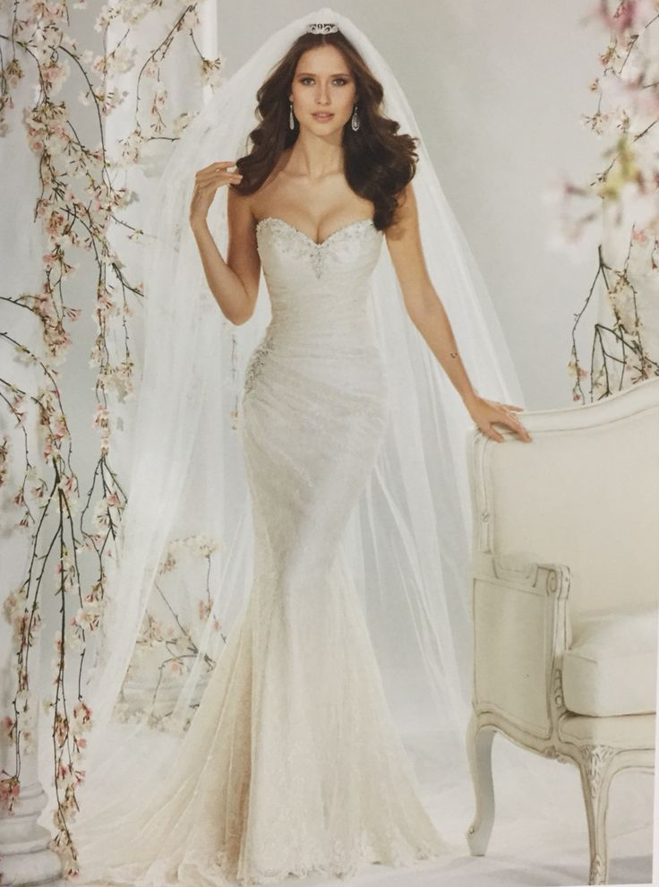 Sophia Tolli Australia Name Roslin Ivory Blush And White Dream Wedding Dressescute Dressesbridal