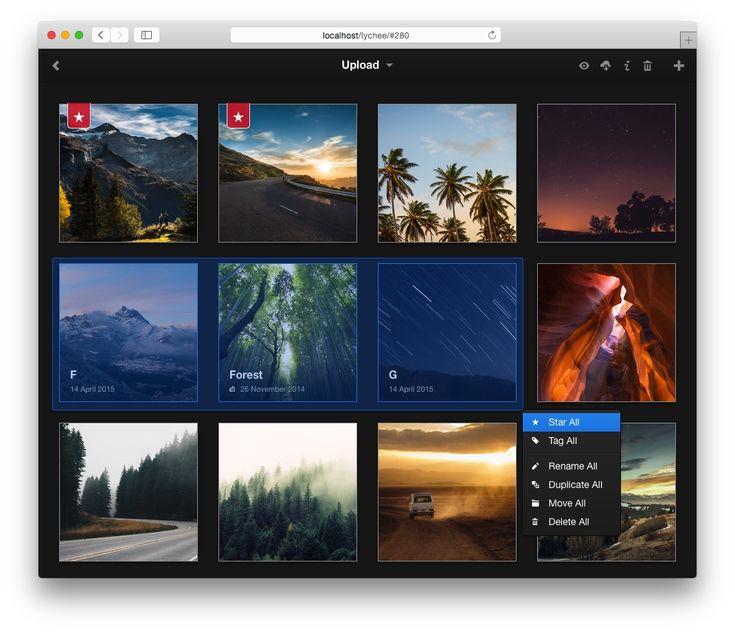 Desktop Screenshot, Web Development, Management