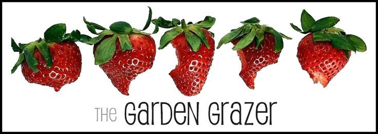 the Garden Grazer, veggie recipe heaven