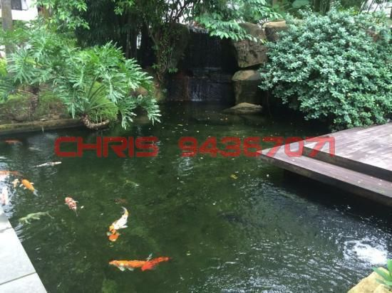 Condominium For Rent - Tanglin Park, 1 Ridley Park, 248466 Singapore, CONDO, 2BR, 1033sqft, #18258808