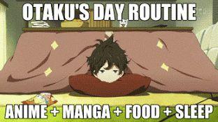 Los días de otaku q tanto nos gustan