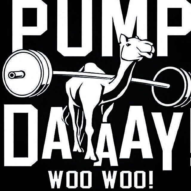 Pump day fitness workout exercise workout quotes exercise quotes hump day fitspiration gym rat