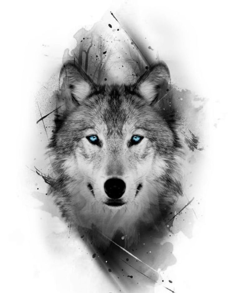 Картинки для мужчин волк, надписями