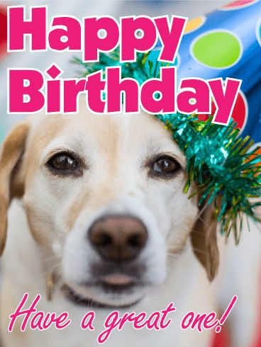 94 best animal birthday cards images on pinterest happy birthday animal birthday card send smiles and a best friend bookmarktalkfo