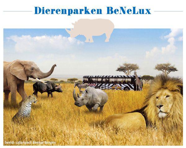 dierentuinen per provincie in Nederland, Belgie en luxemburg #dagjeuit